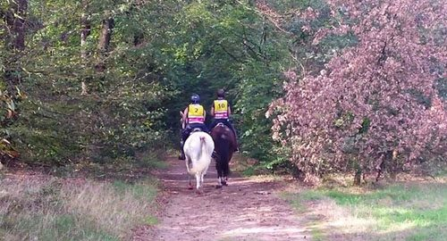 Thea Van Sante and friend at Endurance Montferland 2 featured image